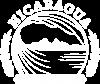 NCBC Logo 2016_White